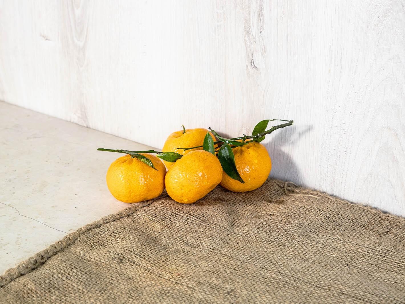 Oranfrutta Tangerine